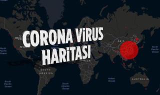 Türkiye Korona Virüs Haritası