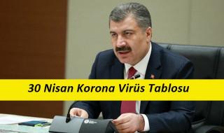 30 Nisan Korona Virüs Verileri