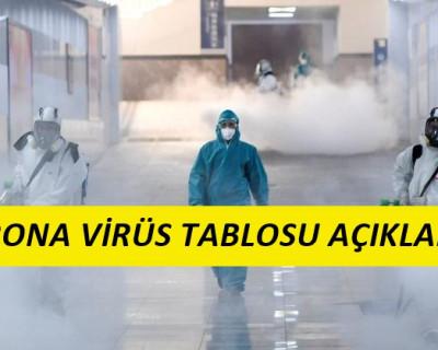 22 Mayıs Korona Virüs Tablosu
