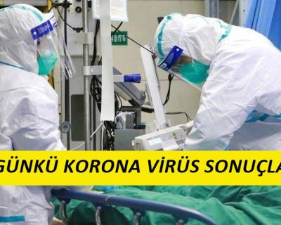 24 Mayıs Korona Virüs Tablosu
