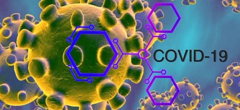 Corona - Korona Yardım Hattı Numarası  iletişim bilgileri