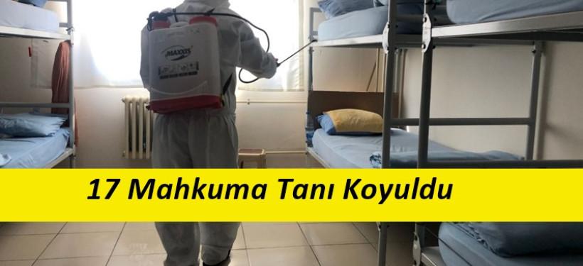 Türkiye'de Cezaevinde 3 Kişi Korona Virüs'den Yaşamını Yitirdi
